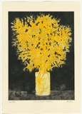 Artist: GRIFFITH, Pamela | Title: First of August, Wattle Day | Date: 1980 | Technique: etching, soft ground, sugar lift, aquatint printed in colour from two zinc plates | Copyright: © Pamela Griffith