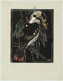 Artist: PRESTON, Margaret | Title: Kookaburra | Date: 1930 | Technique: woodcut, printed in black ink, from one block; hand-coloured | Copyright: © Margaret Preston. Licensed by VISCOPY, Australia