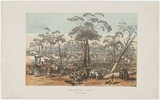 Artist: ANGAS, George French | Title: Eagle-Hawk Gully. Bendigo. | Date: 1852 | Technique: lithograph, printed in colour, from three stones