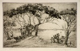 Artist: MORT, Eirene | Title: Sydney Harbour from Vaucluse | Date: 1923 | Technique: etching, printed in black ink, from one plate