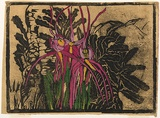 Artist: PRESTON, Margaret | Title: Spider orchid. | Date: 1939 | Technique: woodcut, printed in black ink, from one block; hand-coloured | Copyright: © Margaret Preston. Licensed by VISCOPY, Australia