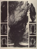 Artist: JOHNSTONE, Ruth | Title: Baptism by fire | Date: 1986 | Technique: lithograph, printed in black ink, from one stone
