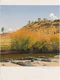 Artist: ROSE, David | Title: Autumn at MacQuarie River | Date: 1993 | Technique: screenprint, printed in colour, from multiple stencils