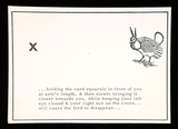 Artist: PEACOCK, Bob | Title: Vanishing bird, heath hen: a postcard from the portfolio Rare birds with sticky wings. | Date: (1976) | Technique: photocopy