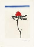 Artist: ROSE, David | Title: Waratah | Date: 1978 | Technique: aquatint, printed in colour, from one plate