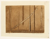 Artist: WILLIAMS, Fred | Title: Fallen tree | Date: 1962 | Technique: etching, engraving, aquatint, drypoint, printed in brown ink, from one copper plate | Copyright: © Fred Williams Estate