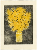 Artist: GRIFFITH, Pamela | Title: First of August, Wattle Day | Date: 1980 | Technique: etching, soft ground, sugar lift, aquatint printed in colour, from two zinc plates | Copyright: © Pamela Griffith
