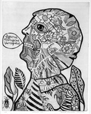 Artist: HANRAHAN, Barbara | Title: Botanical man | Date: 1965-75 | Technique: etching, printed in black ink with plate-tone, from one plate