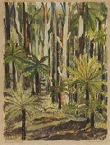 Artist: PRESTON, Margaret | Title: Fern trees, Laura. | Date: 1946 | Technique: monotype, printed in colour, from one masonite sheet | Copyright: © Margaret Preston. Licensed by VISCOPY, Australia