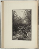 Title: Valley of the Grose | Date: 1886 | Technique: woodengravings, printed in black ink, from one block