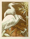 Artist: HIGGS, Florence | Title: Herons | Date: c.1954 | Technique: linocut, printed in colour, from four blocks | Copyright: Unable to display image due to Copyright Restrictions