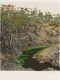 Artist: ROSE, David | Title: At Iron Pot Creek near Jindabyne | Date: 1993 | Technique: screenprint, printed in colour, from multiple stencils