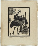 Artist: PRESTON, Margaret | Title: Emus | Date: 1923 | Technique: woodcut, printed in black ink, from one block | Copyright: © Margaret Preston. Licensed by VISCOPY, Australia