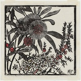 Artist: PRESTON, Margaret | Title: Tea-tree and Hakea petiolaris | Date: 1936 | Technique: woodcut, printed in black ink, from one block; hand-coloured | Copyright: © Margaret Preston. Licensed by VISCOPY, Australia