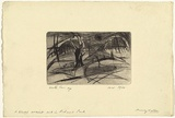 Artist: WALKER, Murray | Title: A blasted ancient oak in Richmond Park | Date: 1960 | Technique: drypoint, printed in black ink, from one plate