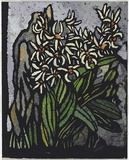 Artist: PRESTON, Margaret | Title: Rock lily. | Date: 1953 | Technique: stencil, printed in colour, from one hand-cut paper stencil | Copyright: © Margaret Preston. Licensed by VISCOPY, Australia