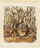 Artist: PRESTON, Margaret | Title: Stephen's Creek, NSW. | Date: 1946 | Technique: monotype, printed in colour, from one masonite sheet | Copyright: © Margaret Preston. Licensed by VISCOPY, Australia