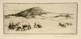Artist: MORT, Eirene | Title: Black Mountain, Canberra | Date: 1924 | Technique: etching, printed in black ink, from one plate