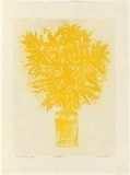 Artist: GRIFFITH, Pamela | Title: First of August, Wattle Day | Date: 1980 | Technique: sugar lift, soft ground and aquatint, printed in yellow ink, from one zinc plate | Copyright: © Pamela Griffith