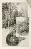 Artist: FULLWOOD, A.H. | Title: Lady Carrington Road; Sea reach  Port Hacking; Freshwater Beach. | Date: 1886-88 | Technique: wood-engraving, printed in black ink, from one block