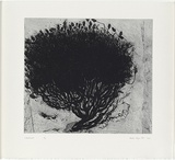Artist: KLUGE-POTT, Hertha | Title: Landmark | Date: 1994 | Technique: drypoint | Copyright: © Hertha Kluge-Pott