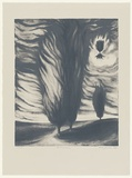 Artist: JOHNSTONE, Ruth | Title: Burning bush | Date: 1986 - 1987 | Technique: lithograph, printed in grey ink, from one stone