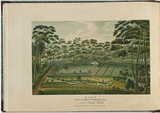 Artist: LYCETT, Joseph | Title: Raby, a farm belonging to Alexander Riley Esq., New South Wales. | Date: 1825 | Technique: etching and aquatint, printed in black ink, from one copper plate; hand-coloured