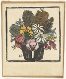 Artist: PRESTON, Margaret | Title: Flannel flowers. | Date: 1928 | Technique: woodcut, printed in black ink, from one block; hand-coloured | Copyright: © Margaret Preston. Licensed by VISCOPY, Australia
