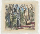 Artist: PRESTON, Margaret | Title: Northern Territory gums, etc. | Date: 1946 | Technique: monotype, printed in colour, from one masonite sheet | Copyright: © Margaret Preston. Licensed by VISCOPY, Australia
