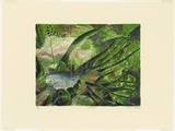 Artist: ROBINSON, William | Title: Rainforest | Date: 1992 | Technique: lithograph, printed in colour, from multiple plates