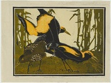 Artist: GRIFFIN, Murray | Title: Regent bower birds [1]. | Date: 1932 | Technique: linocut, printed in colour, from multiple blocks