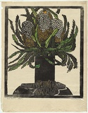 Artist: PRESTON, Margaret | Title: West Australian banksia. | Date: 1929 | Technique: woodcut, printed in black ink, from one block; hand-coloured | Copyright: © Margaret Preston. Licensed by VISCOPY, Australia