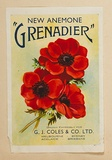Artist: BURDETT, Frank | Title: Label: G.J. Coles & Co, new anemone 'Grenadier'. | Date: (1930) | Technique: lithograph, printed in colour, from multiple stones [or plates]