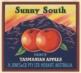 Artist: UNKNOWN | Title: Label: Sunny South apples, Hobart | Date: c.1930 | Technique: colpour lithograph,