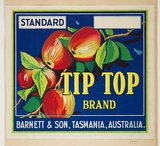 Artist: BURDETT, Frank | Title: Label: Tip Top apples. | Date: 1931 | Technique: lithograph, printed in colour, from multiple stones [or plates]