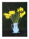 Artist: GRIFFITH, Pamela | Title: Daffodils. | Date: 1986 | Technique: hardground-etching and aquatint, printed in colour, from three zinc plates | Copyright: © Pamela Griffith
