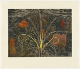 Title: Fan Palm - Dhalpi | Date: 2010 | Technique: etching, printed in colour, from six plates